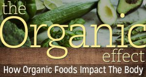 Organic Foods Impact The Body